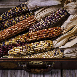 Suitcase Full Of Indian Corn - Garry Gay