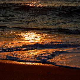 Dianne Cowen - Sultry Glow