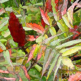 Betsy Zimmerli - Sumac Autumn