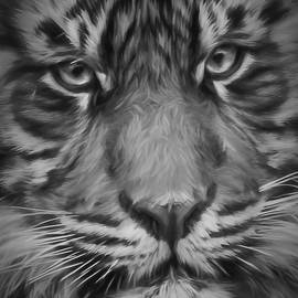 Wes and Dotty Weber - Sumatran Tiger Black and White W0700