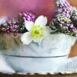 Darren Fisher - Summer Fragrance