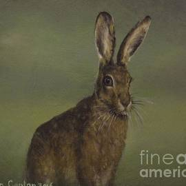 Sean Conlon - Summer Hare