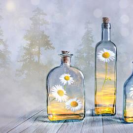 Veikko Suikkanen - Summer in a bottle