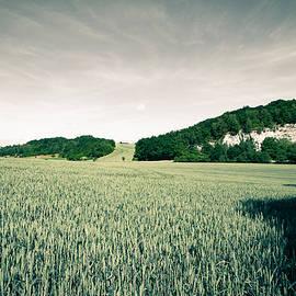 Andreas Levi - summer in Ruedigsdorf