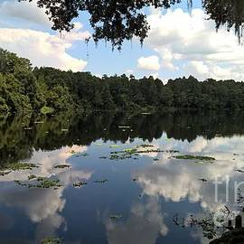 AS Pilette - Summer Lake