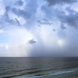 Theresa Campbell - Summer Rain