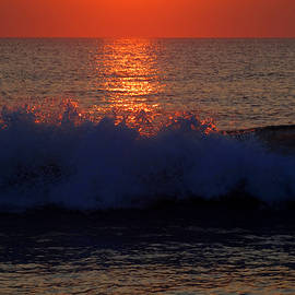 Dianne Cowen - Dreaming of Summer