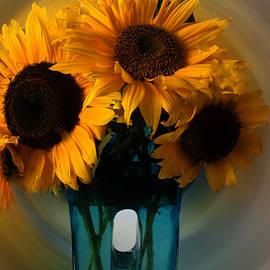 Colette V Hera  Guggenheim  - Sun Flower Joy