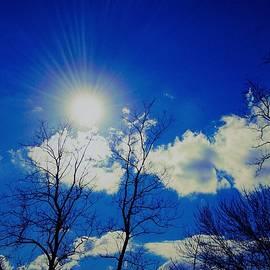 Debra Lynch - Sun Glow