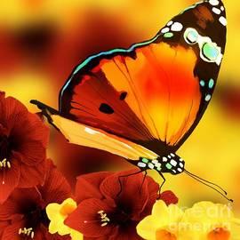 Gayle Price Thomas - Sun Raised Butterfly