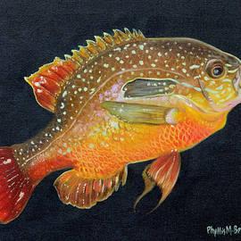 Phyllis Beiser - Sunfish