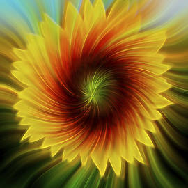 Terry DeLuco - Sunflower Beams