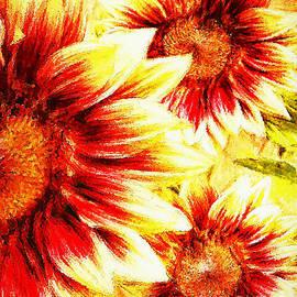 Tina LeCour - Sunflower Burst