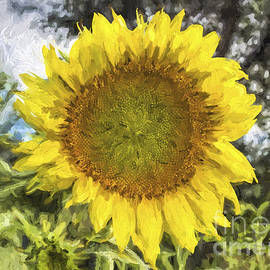 Janice Rae Pariza - Sunflower Impasto