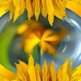Lyn  Perry - Sunflower Power