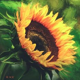 Rose-Maries Pictures - Sunflower