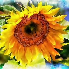 Barbara Chichester - Sunflower Splendor