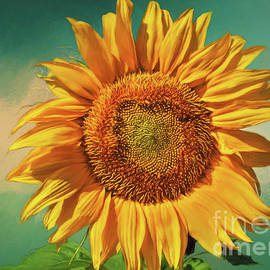 Janice Rae Pariza - Sunflower Summer