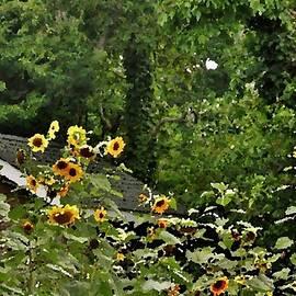 Kim Bemis - Sunflowers at the Good Earth Market