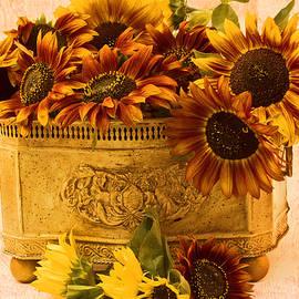 Sandra Foster - Sunflowers Galore
