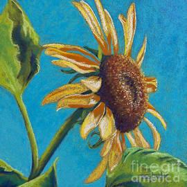 Tracy L Teeter - Sunflower