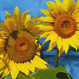 Kathy  Symonds - Sunflowers- Sunny Day- Floral Art