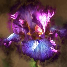 Teresa Wilson - Sunlight Dancing on Iris