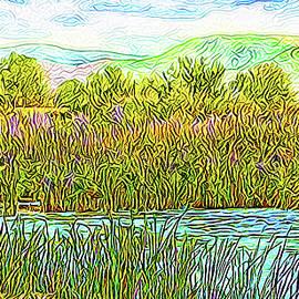 Joel Bruce Wallach - Sunlight Shimmer - Pond In Boulder County Colorado