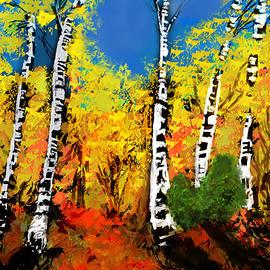 Diana Riukas - Sunlit Autumn Birches
