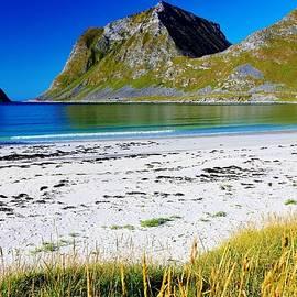 David Broome - Sunny North Atlantic Fjordland Beach