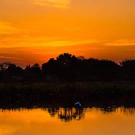 Robin Zygelman - Sunrise in Wakodahotchee