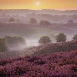 Sunrise Layers - Martin Podt