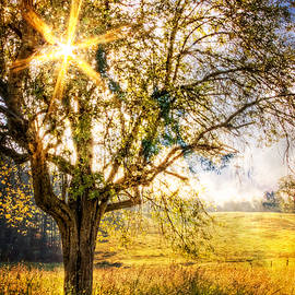 Debra and Dave Vanderlaan - Sunrise Meadow II