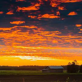Jukka Heinovirta - Sunset And Mist On The Fields