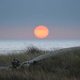 Deana Glenz - Sunset at Halfmoon Bay
