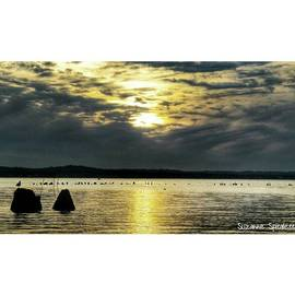 Suzanne Spitaletta - Sunset At Sandy Hook From Yesterday
