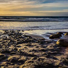 Randy Bayne - Sunset at the Beach