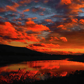 Raymond Salani III - Sunset at Wallkill River National Wildlife Refuge