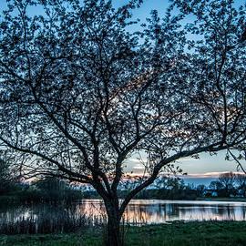 Randy Scherkenbach - Sunset by the Pond
