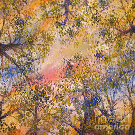 Jim Rehlin - Sunset Canopy