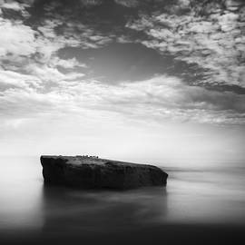 William Dunigan - Sunset Cliffs Park Rock