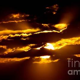 Debra Banks - Sunset Drama