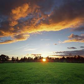 Sunset Field - Jerry LoFaro
