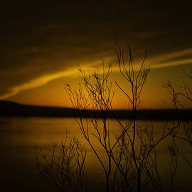 Ben Aronoff - Sunset Heaven
