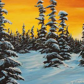 Scott Thompson - Sunset in the Bogg