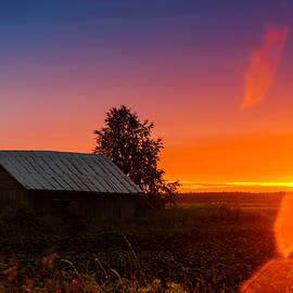 Jukka Heinovirta - Sunset Lens Flare