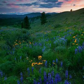 Mike  Dawson - Sunset Meadow Trail