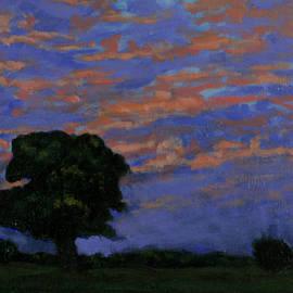David Zimmerman - Sunset Meadows