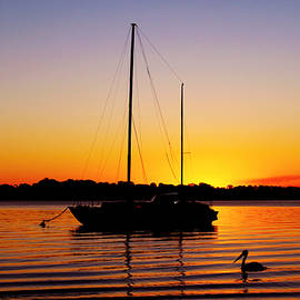 Susan Vineyard - Sunset off Bribie Island