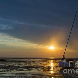 Diane Diederich - Sunset on Cape Cod